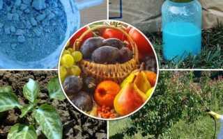 Медный купорос — применение в садоводстве