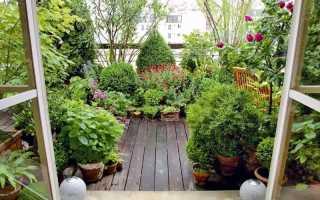 Оригинальная идея для вашего жилища — разбейте ботанический сад на скучном балконе