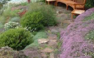 Садовая скамейка: практичность или украшение