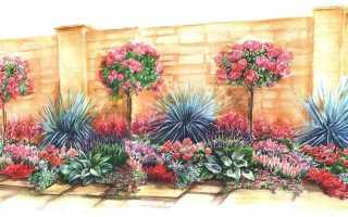 Потрясающие штамбовые розы, кожистые листья бадана, головокружительный аромат лаванды: средиземноморский стиль вашего сада